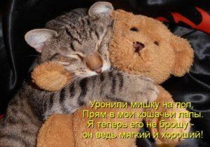 Фотография с сайта http://www.liveinternet.ru/users/4284365/post297423872/